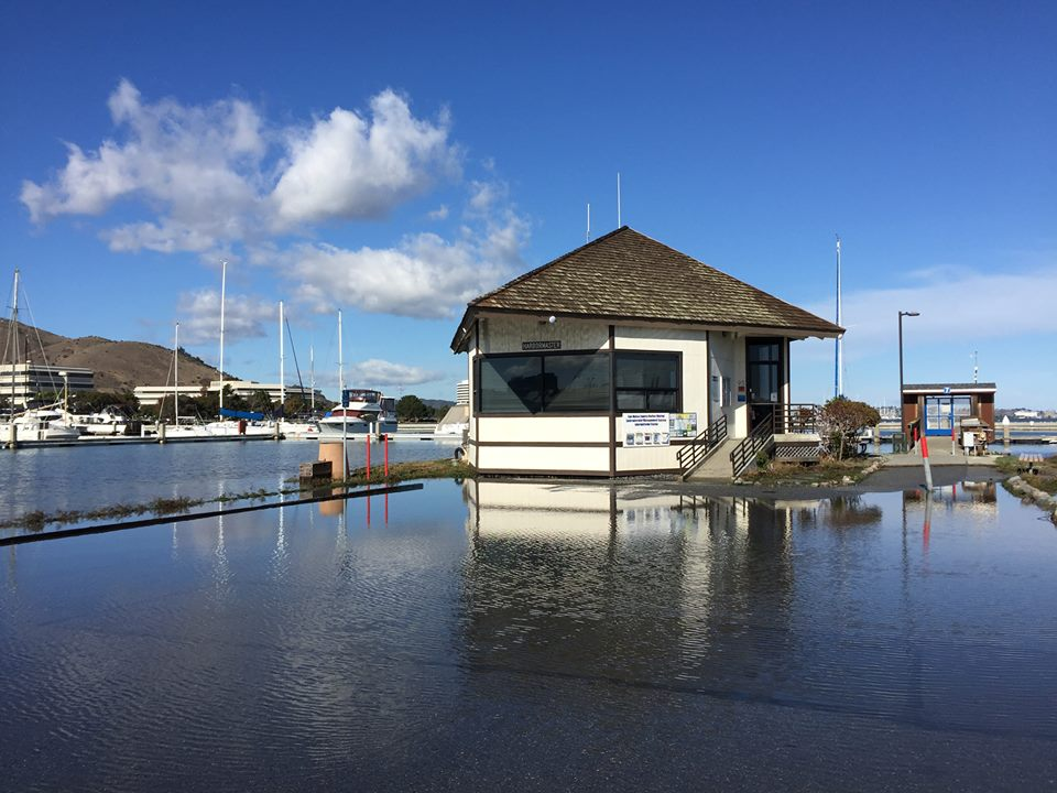 Harbor Master Office King Tide flooding at Oyster Point Marina—Wed., Nov. 25, 2015 Photo: S Brennan