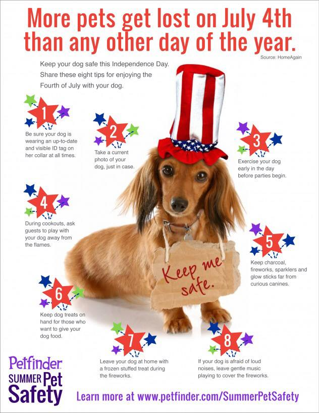 Keep Your Pets Safe This 4th of July Season